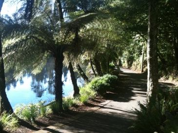 Path Round Lake, New Plymouth